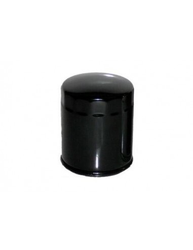 Filtro de Aceite para Moto - HF170
